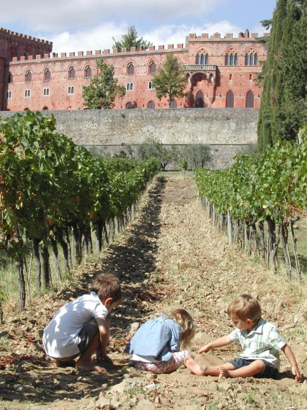 vigne-016