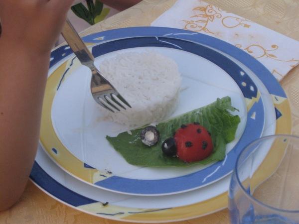 riso e coccinella di pomodoro
